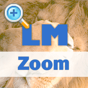 LM-Zoom